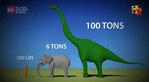 Tamaño y peso de un Titanosaurus